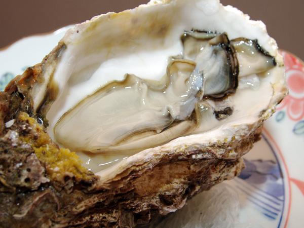 天然 岩牡蠣